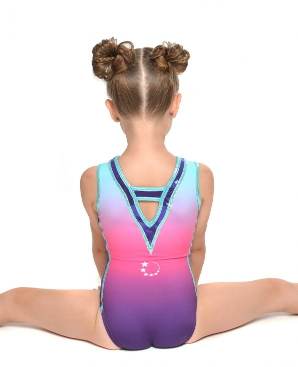 New Purple Pink Ombre Leotard